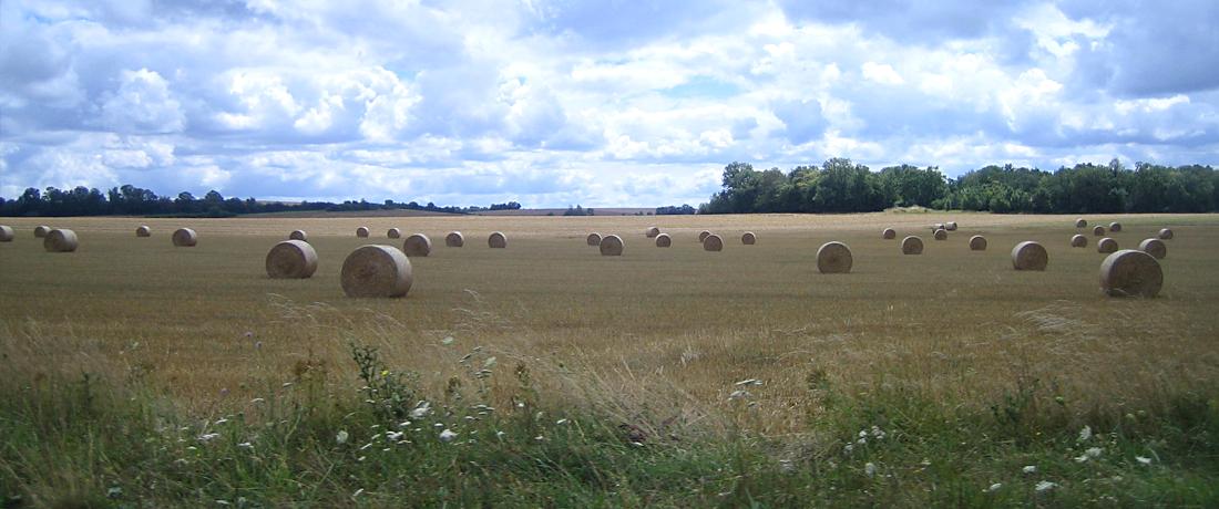 En Pays Châtillonnais